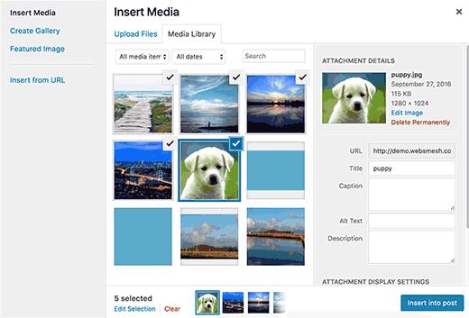 مشکلات رایج هنگام کار با تصاویر در وردپرس