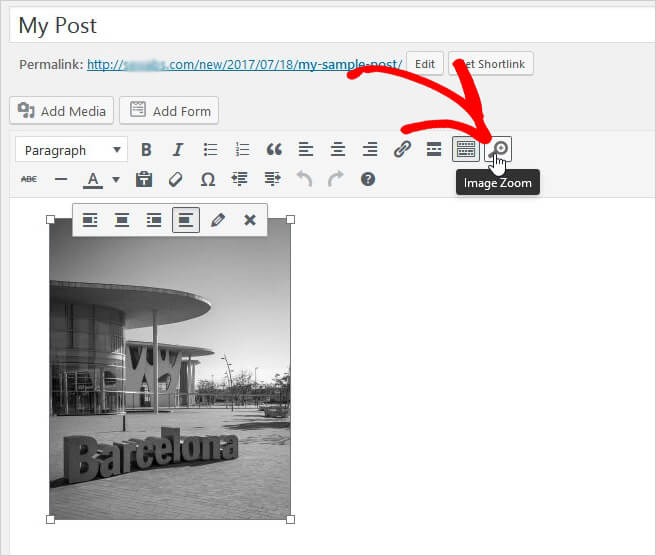 افزودن خاصیت زوم به تصاویر پست های وردپرس