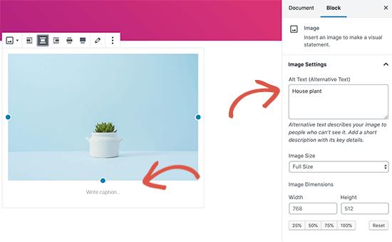 اضافه کردن متن جایگزین و کپشن برای تصویر در وردپرس